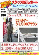 blog-20140220-hiko.jpg