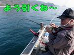 blog-2014 3 24.honten  youhiku  jpg.jpg