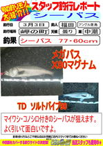 blog-20140306-hikoshima.jpg