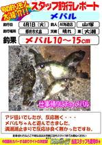 blog-20140401-kaiyuu-mebaru.jpg