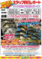 blog-20140409-karuga-mebaru.jpg