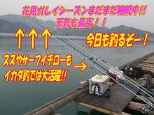 blog-20140416-kurahashiikada-karei1.jpg