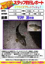 blog-20140418-ooshimaten-f.jpg