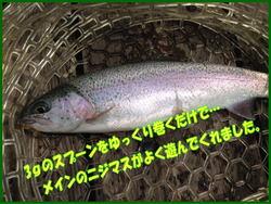 blog-20140418-ooshimaten-t3.jpg