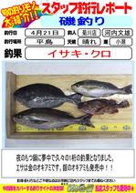 blog-20140421-kikugawa-isaki.jpg
