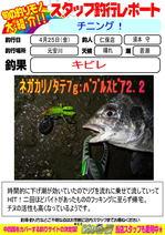 blog-20140426-niho-a.jpg