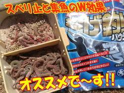 blog-20140513-kurahashi-kisu4.jpg