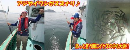 blog-20140528-tokuyama-aji1.jpg