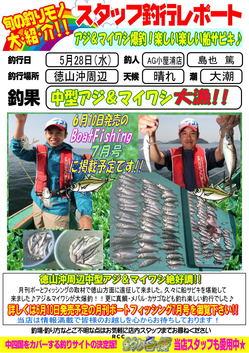 blog-20140528-tokuyama-aji2.jpg