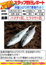 blog-20140529-toyooka-01.jpg