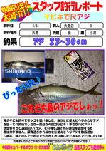 blog-20140605-ooshimaten-01.jpg