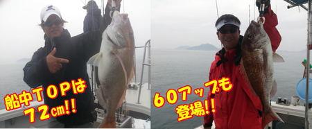 blog-20140611-ooshimaoki-madai1.jpg