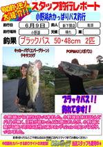 blog-20140622-shinshimo-kito.jpg