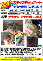 blog-choufu-20140628-watari.jpg