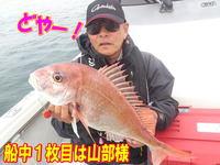 blog-20140611-ooshimaoki-madai-yuuyuu1.jpg