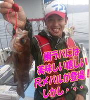 blog-20140611-ooshimaoki-madai-yuuyuu12.jpg