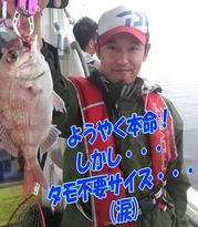 blog-20140611-ooshimaoki-madai-yuuyuu13.jpg
