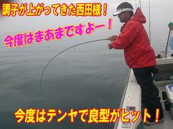 blog-20140611-ooshimaoki-madai-yuuyuu14.jpg