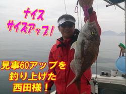 blog-20140611-ooshimaoki-madai-yuuyuu15.jpg
