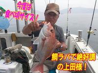 blog-20140611-ooshimaoki-madai-yuuyuu17.jpg