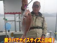 blog-20140611-ooshimaoki-madai-yuuyuu5.jpg
