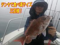 blog-20140611-ooshimaoki-madai-yuuyuu7.jpg