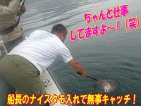 blog-20140611-ooshimaoki-madai-yuuyuu9.jpg