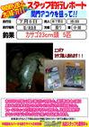 blog-20140709-shinshimo-ikeda3.jpg