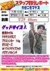 blog-20140710-shinshimo-hata.jpg