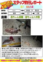 blog-20140812-ooshima.jpg