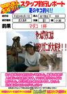 blog-20140812-shinshimo-ikeda.jpg