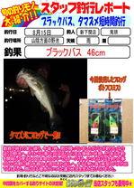 blog-20140815-shinshimo-kitou.jpg