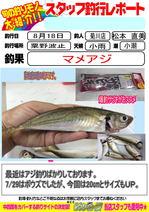blog-20140818-kikugawaaji.jpg