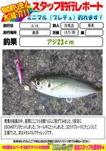 blog-20140818-tsushima-iiduka.jpg