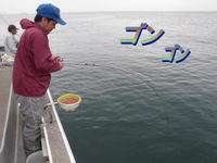 blog-2014 9 24 misaki-8.jpg