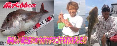 blog-20140827-ayumimaru1.jpg