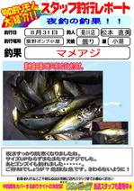 blog-20140831-kikugawa-aji5.jpg