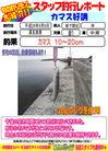 blog-20140906-shinshimo-hata.jpg