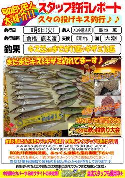 blog-20140909-karoto-kisu.jpg