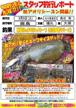 blog-20140909-kashima-aori.jpg