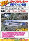 blog-20140917-shinshimo-hata.jpg