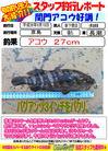 blog-20140918-shinshimo-hata.jpg
