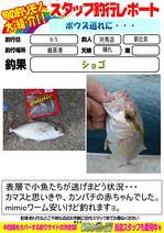 blog-20160905-tsushimaten-.jpg