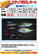 blog-20160908-kikugawa-madai.jpg