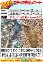news-20140930-koyaura-ika01.jpg