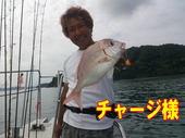 blog-20140827-ayumimaru-madai14.jpg