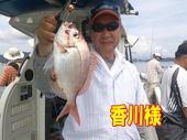 blog-20140827-ayumimaru-madai16.jpg