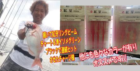 blog-20140827-ayumimaru-madai20.jpg