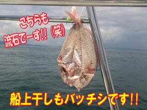 blog-20140827-ayumimaru-madai22.jpg
