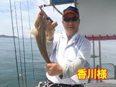 blog-20140827-ayumimaru-madai23.jpg